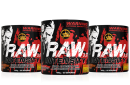 All Stras Raw Intensity 3.17 - 400g pulver